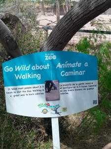 It takes most people 2-3 hours to visit the zoo.  Walking is a great way to burn calories.